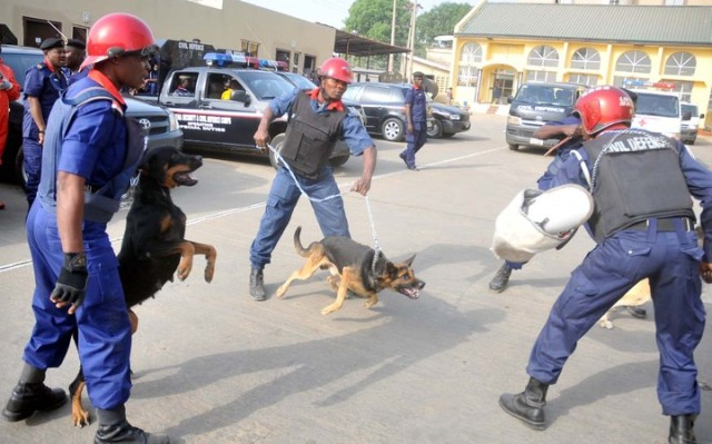A K9 team of the Nigeria Security and Civil Defence Corps demonstrate their skills